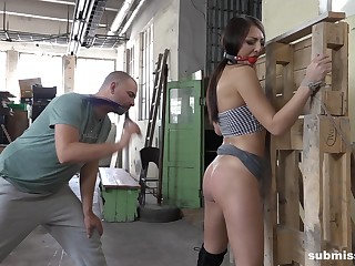 Lickerish and tied Katy Rose gets her shaved pussy pleased parts