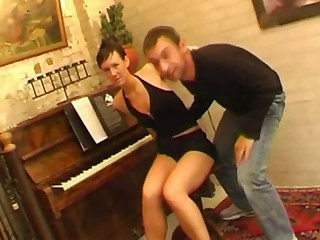 Shorthair Dutch Piano Teacher Reverie Arouse Each Other